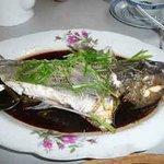 Steamed blue cod, very fresh