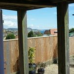 LYME BAY FROM FRENCH WIDOWS