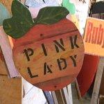 Pink Lady sign at Justus Orchard