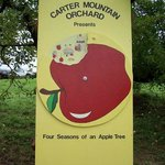 Apple sign at Carter Mountain Orchard