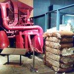 Produkcja bawełny