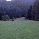 Huge grassy area