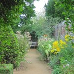 Petersfield Physic Garden