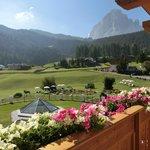 Blick über die Balkonblumen auf den Langkofel