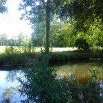 A peaceful lakeside spot