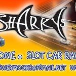 slotcar racing