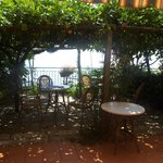 The lemon grove terrace