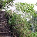 Sekumpul Falls_The 350 steps to the river