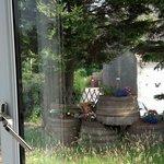 outside window view