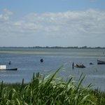 Ilha da Torotama, silencio e natureza