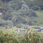Peaceful village under Waipio Valley from lookout