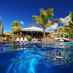 Pool & Oasis Bar