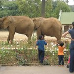 National Zoological Gardens of South Africa