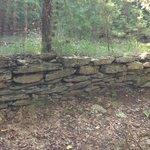 Wolf rock trail