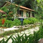 Langchia Village Resort Foto