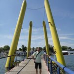 Ponte sul Danubio