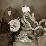 playing the oud for the sultan