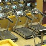 Treadmills at the Canyon Ranch SpaClub