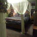 Pine Canopy Room