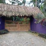 la elaborada arquitectura del caribe se refleja en el portón