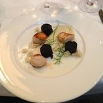 Seared scallops with black pudding