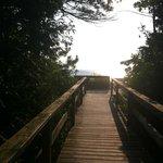 Boardwalk to beach from campsite