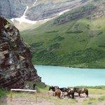 Cracker Lake lunch break, Glacier National Park