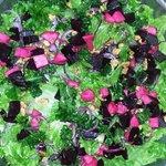 Fabulous fresh local salad