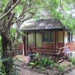 Teak wood bungalow