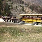 Anreise im Pferde Omnibus.....