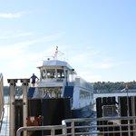 Ferry Alexander Hamilton