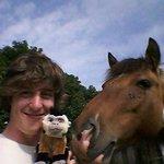 myself, a monkey (fake) and a horse (real)