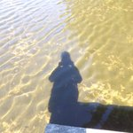 On Lake LuLu