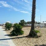 Spiaggia le palme 88/89