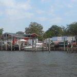 Harbor Duck Adventures