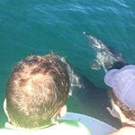 Changing Tide Tours - You can almost reach out and touch!