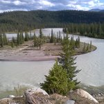 View of the Athabasca River from the site