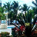 stunning pool @ viva T ♡