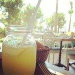 The best lemonade!!!