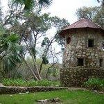 The Pidgeon house