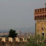 Veduta cupola duomo Firenze 2