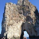 Tour with Capri Whales