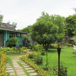 nice and well maintained garden