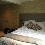 Duroc (type of pig) room