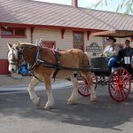 You will learn the history of Wickenburg, AZ