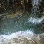 Photo de Michael's Resort and Dive