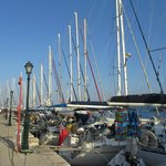 sunny day at the harbourside
