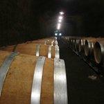Caves for oak barrel aging