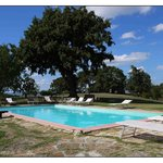 la piscina sotto la quercia