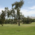 Área para jogar Golf.